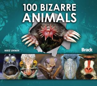Cover image for the book 100 Bizarre Animals, First Edition