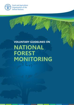 Cover image for the book Voluntary Guidelines on National Forest Monitoring