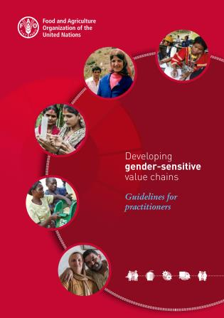 Cover image for the book Developing Gender-sensitive Value Chains: Guidelines for Practitioners