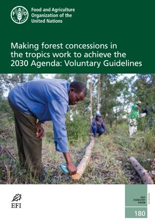 Cover image for the book Making Forest Concessions in the Tropics Work to Achieve the 2030 Agenda: Voluntary Guidelines
