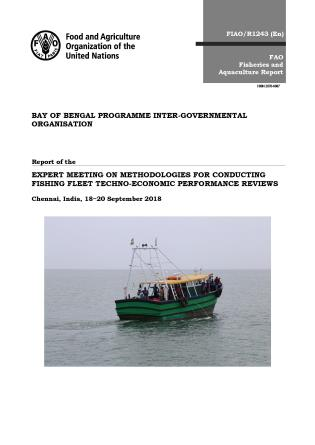 Cover image for the book Report of the Expert meeting on Methodologies for Conducting Fishing Fleet Techno-Economic Performance Reviews, Chennai, India, 18-20 September 2018