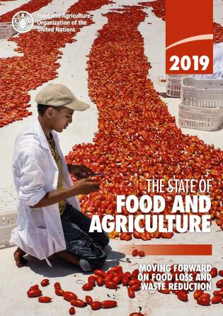 Cover image for the book The State of Food and Agriculture 2019: Moving Forward on Food Loss and Waste Reduction