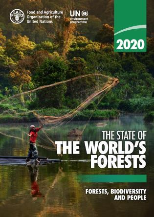 Cover image for the book The State of the World's Forests 2020