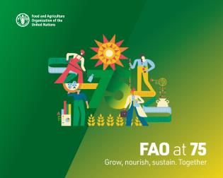 Cover image for the book FAO at 75: Grow Nourish Sustain Together