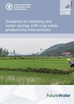 Cover image for the book Guidance on Realizing Real Water Savings with Crop Water Productivity Interventions