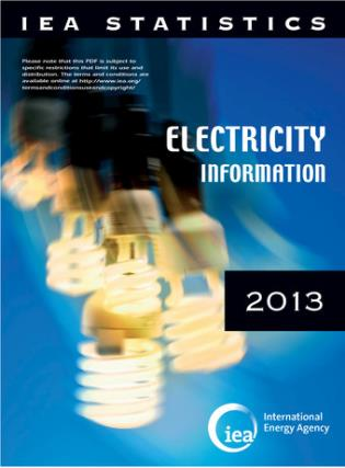 Cover image for the book Electricity Information: 2013