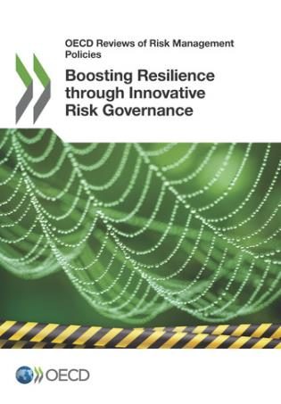 Cover image for the book Boosting Resilience Through Innovative Risk Governance: OECD Reviews Of Risk Management Policies