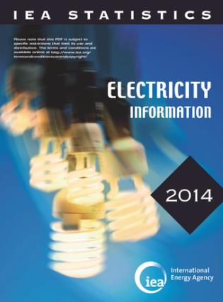 Cover image for the book Electricity Information: 2014