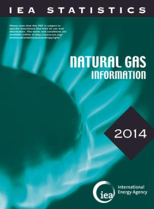 Cover image for the book Natural Gas Information: 2014