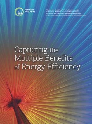 Cover image for the book Capturing The Multiple Benefits Of Energy Efficiency: A Guide To Quantifying The Value Added