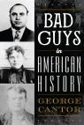 link and cover image for the book Bad Guys in American History