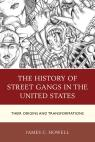 link and cover image for the book The History of Street Gangs in the United States: Their Origins and Transformations