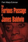 link and cover image for the book The Furious Passage of James Baldwin