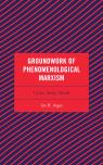 link and cover image for the book Groundwork of Phenomenological Marxism: Crisis, Body, World